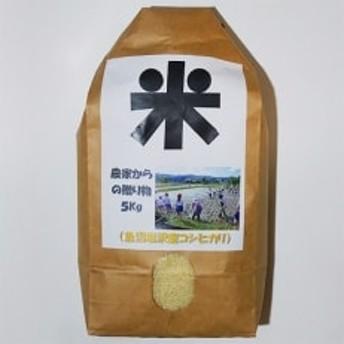 南魚沼産(しおざわ)こしひかり、栽培期間中農薬を8割減らして育てたお米 精米5kg