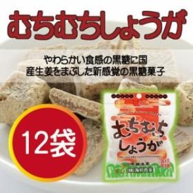 むちむちしょうが 37g×12袋 沖縄 土産 定番 人気  送料無料