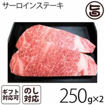 【ギフト用】 A4~5等級のきたかみ牛 サーロインステーキ(250g x 2枚)  条件付き送料無料