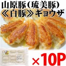 山原豚(琉美豚) ≪白豚≫ギョウザ 12個入り×10P 沖縄 土産 貴重  条件付き送料無料