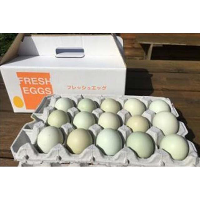 江原ファーム アローカナの青い卵(30個)