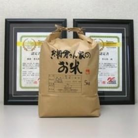 【平成30年産】網倉さん家のお米 白米 5kg[5839-9021]