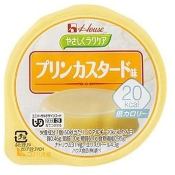 ds-2157499 20kcal プリンカスタード 48個 (ds2157499)