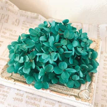 希少花材プリザーブドフラワー紫陽花小分け ️ターコイズグリーン ️ハーバリウム花材プリザーブドフラワー