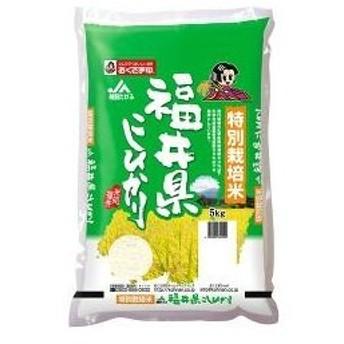 平成30年度産 おくさま印 特別栽培米 福井県産 こしひかり ( 5kg )/ おくさま印