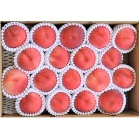 たっぷり5kg! 山形の白桃 品種おまかせ (13~20玉) 秀品 015-B23