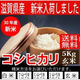 30年産 新米 滋賀県産コシヒカリ5Kg玄米 【精米方法が選べます】 お好きな分つきに 健康応援 送料無料※一部地域を除く