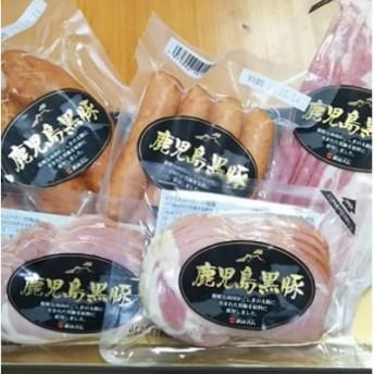 鹿児島県産黒豚バラエティーセット_45-H13