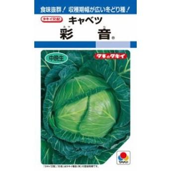 タキイ種苗 キャベツ 彩音 ペレット 小袋 150粒