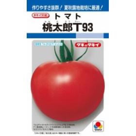 タキイ種苗 トマト 桃太郎T93 1000粒