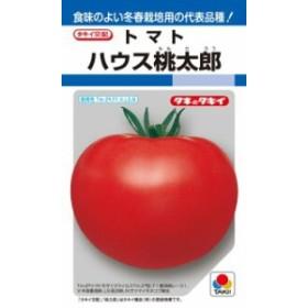 タキイ種苗 トマト ハウス桃太郎 1000粒