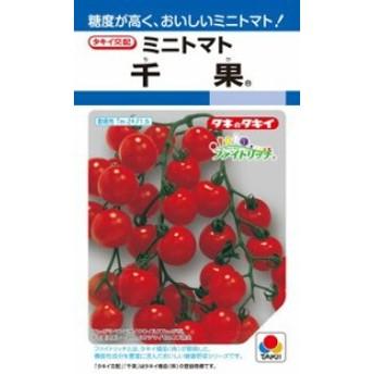 タキイ種苗 トマト 千果 RF