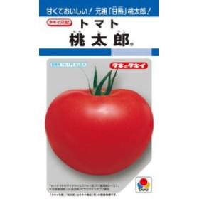 タキイ種苗 トマト 桃太郎 RF