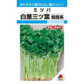 タキイ種苗 葉菜 白茎三ツ葉(関西系)MF
