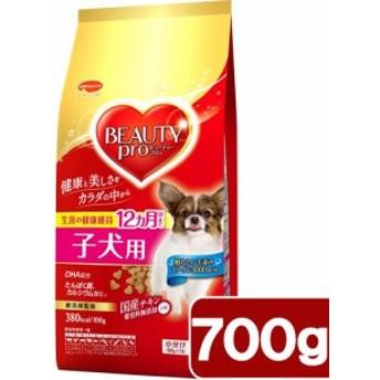 ビューティープロ ドッグ 子犬用 12ヵ月頃まで 700g(100g×7袋) ドッグフード