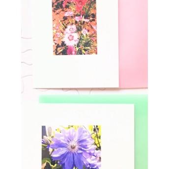 フラワーメッセージカード〜「The Secret Garden No.3/タツタナデシコ&クレマチス・パテンス'ルリオコシ'/カード&封筒 各2枚入り」