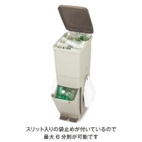 最大6分別できるツインペダル式ゴミ箱