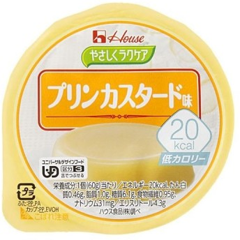 20kcal プリンカスタード 48個【配達日時指定不可】