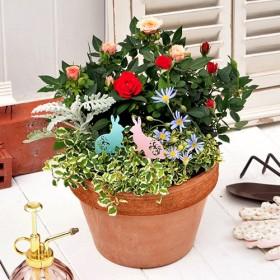 【日比谷花壇】季節の寄せ植え「ミニバラミックスガーデン」