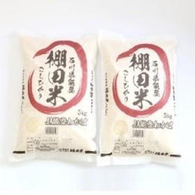 【令和元年産】棚田米コシヒカリ10kg (5kg×2袋)