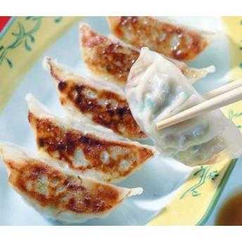 味の素)薄皮餃子約15g×40個入 【同梱・北海道・沖縄不可】【送料無料】