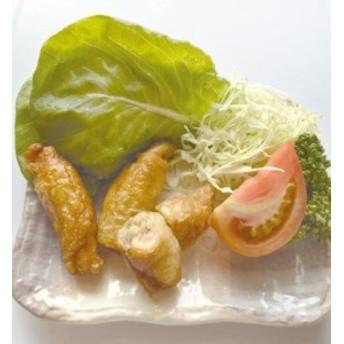 ジャパンフード)鶏皮餃子約25gx20個入り 【同梱・北海道・沖縄不可】【送料無料】