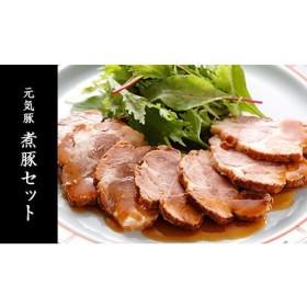 元気豚 煮豚セット 5パック 食品・調味料 お肉 肉(セット品) au WALLET Market