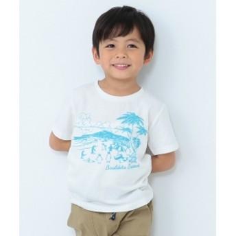 【予約】BEAMS mini / ペンギンビーチTシャツ(90~150㎝) キッズ Tシャツ OFF WHT 150