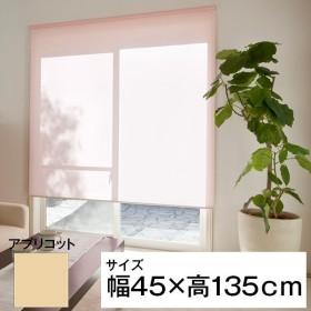 立川機工 ティオリオ ロールスクリーン 無地防炎 45×135 アプリコット
