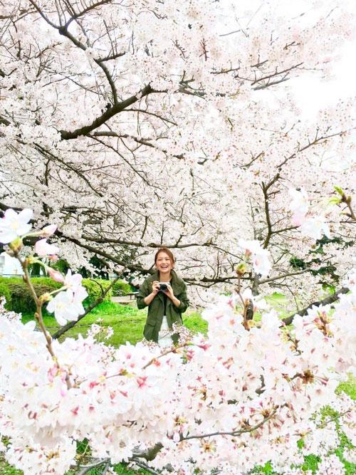 お花見を楽しむために!おさえるべきファッションのポイントは?