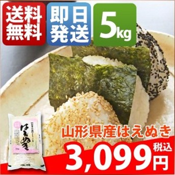 米 5キロ 送料無料 白米 はえぬき 山形県産 30年産 1等米 お米 5kg 安い クーポン対象