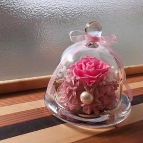 ガラスドーム ピンクの薔薇 プリザーブドフラワー