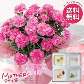 母の日 花 スイーツ セット カーネーション 鉢植え プレゼント ギフト ランキング 和菓子 お菓子 ゼリーのセット