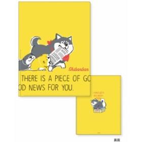 しばんばん 6+miniポケットファイル (マインドウェブ)56123 56124  ファイル メール便NG