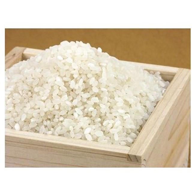 【24年産】新潟産コシヒカリ100% 無洗米5kg