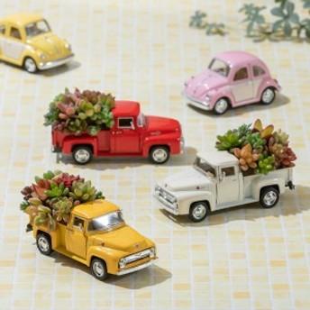 【父の日フラワーギフト】 観葉植物「ビンテージトラック」