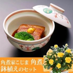 【父の日フラワーギフト】 鉢植えセット「角煮家こじま 角煮」