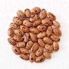 北海道産 中長うずら豆 1kg