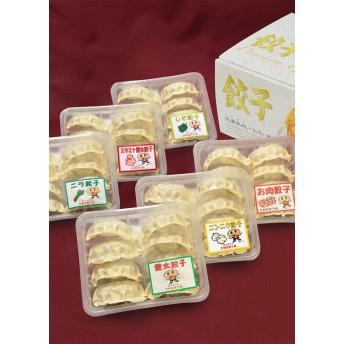 宇都宮餃子館 餃子6種セット(48個入)
