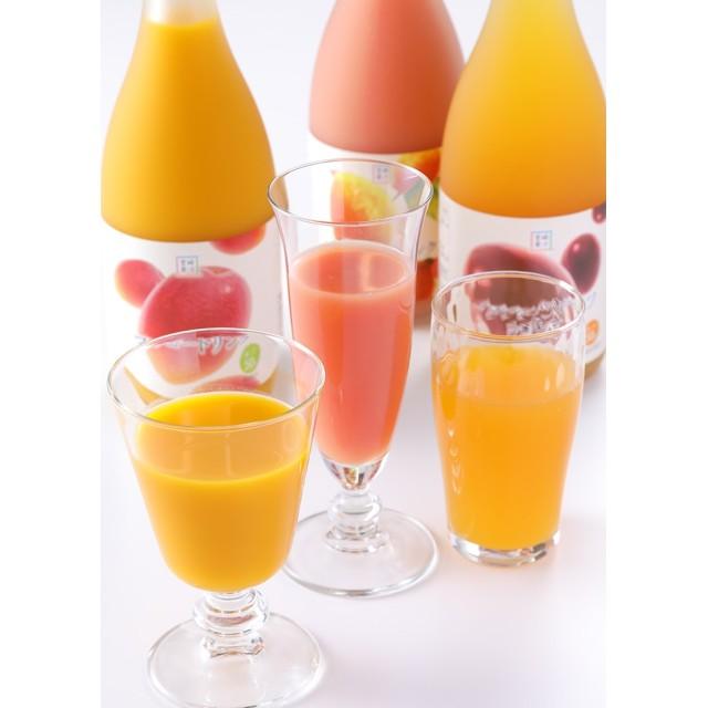 宮崎果汁 【宮崎果汁】トロピカルフルーツドリンク 3本セット