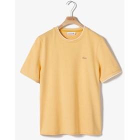 『WEB限定』 鹿の子地Tシャツ