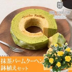 【父の日フラワーギフト】 鉢植えセット「マ・クルール 神戸デコボコバームクーヘン=抹茶ミルクの二層仕立て=」