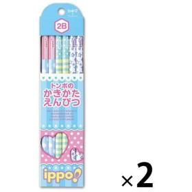 アウトレットトンボ鉛筆 かきかた鉛筆プリントW2B 1セット(24本:12本入×2) KB-KRW03-2B