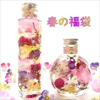 Creema限定 袋『春の訪れ』『ビオラと桜のハーバリウム』
