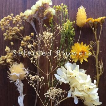 【送料無料】増量済!セレクト花材 詰め合わせ *イエロー系 プリザーブドフラワー ドライフラワー スワッグ リース