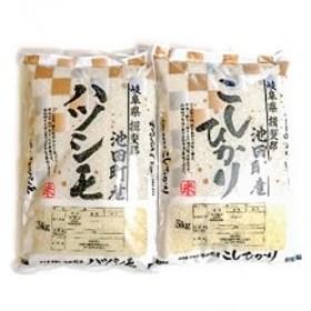 【野原農園】ハツシモ・コシヒカリ 白米 各5kgセット