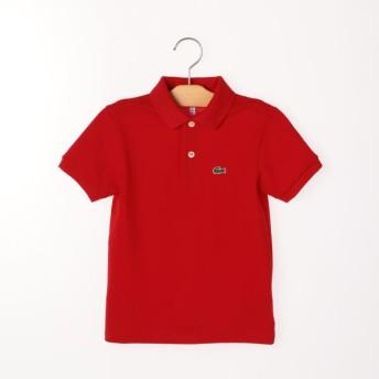 [マルイ] LACOSTE:ポロシャツ(100-130cm)/シップス キッズ(SHIPS KIDS)