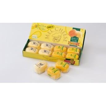 メルチーズ(プレーン&パンプキン) 8個入 ひとくちサイズのチーズケーキ 函館 プティ・メルヴィーユ 冷凍 くりりんかぼちゃ 離島不可