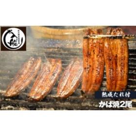 炭火焼一筋125年「うなぎの入船」かば焼2尾(熟成たれ付)