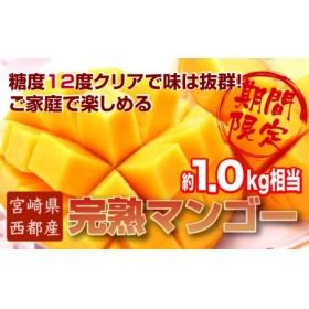 5-64 【数量限定】ご家庭用!!  西都産完熟マンゴー (JA西都) 約1kg入